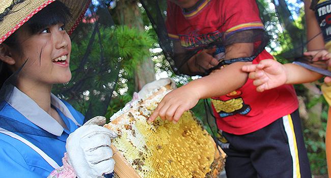 ハチミツ収穫祭 開催(9/13) ~採蜜を通して自然を学ぶ体験イベント~