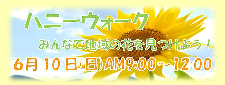 6月10日開催「ハニーウォーク みんなで地域の花を見つけよう!」